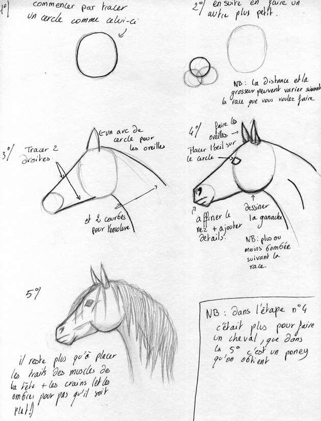 tuto pour apprendre dessiner un cheval fait main sorry. Black Bedroom Furniture Sets. Home Design Ideas
