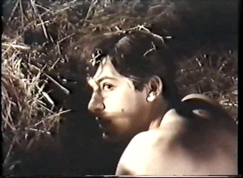 Wildwechsel Film